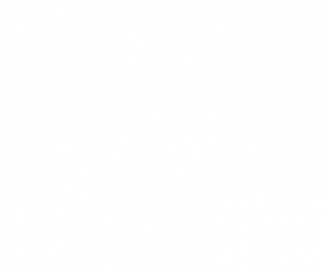 Line drawing of three figures within the female logo icon